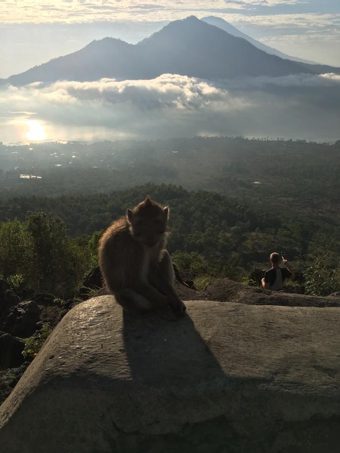 bali_batur_monkey_nov2016