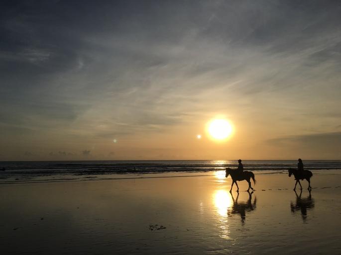 bali_seminyak_horses