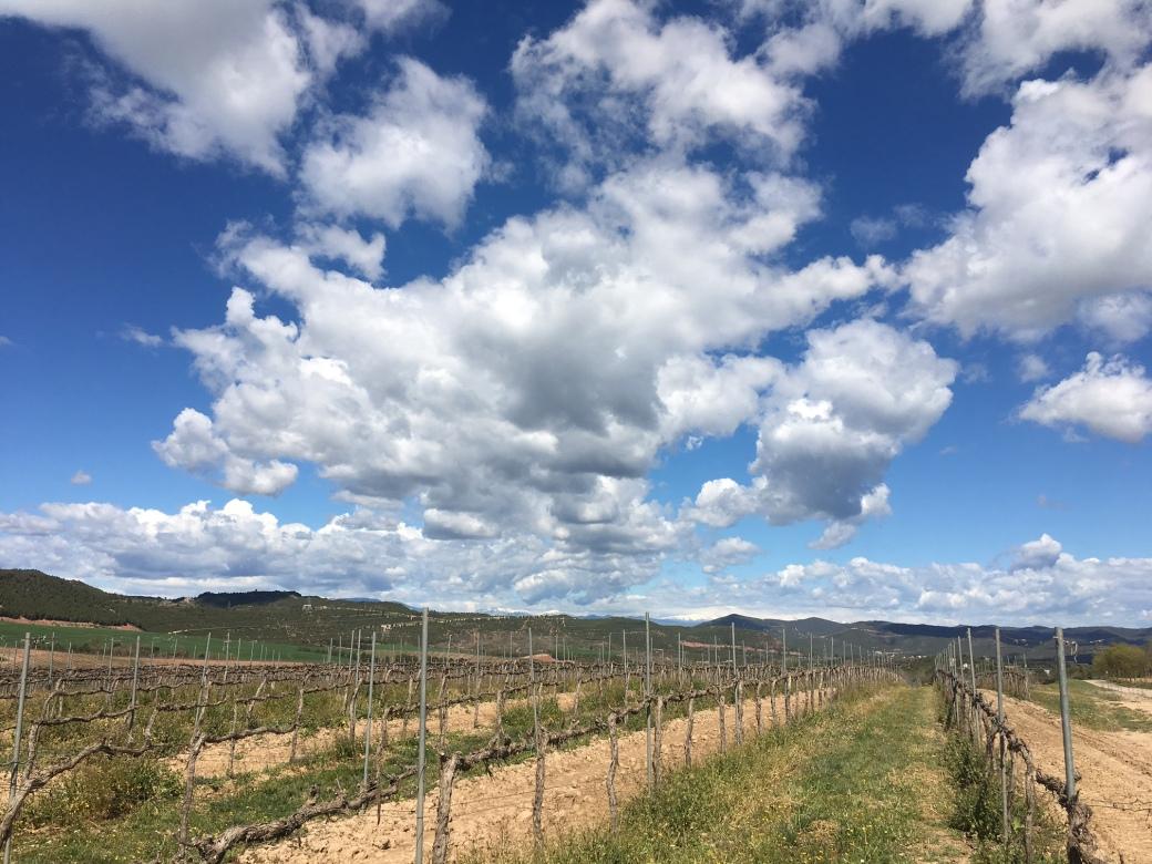 Torres_Pyrenees.jpg