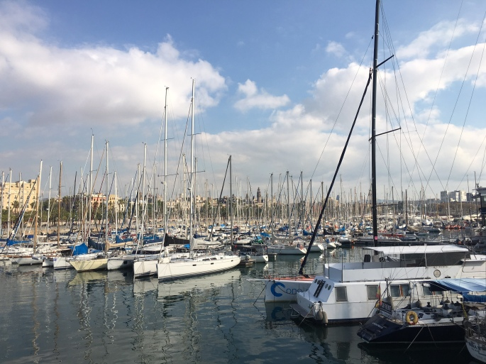 Barca_boats.jpg