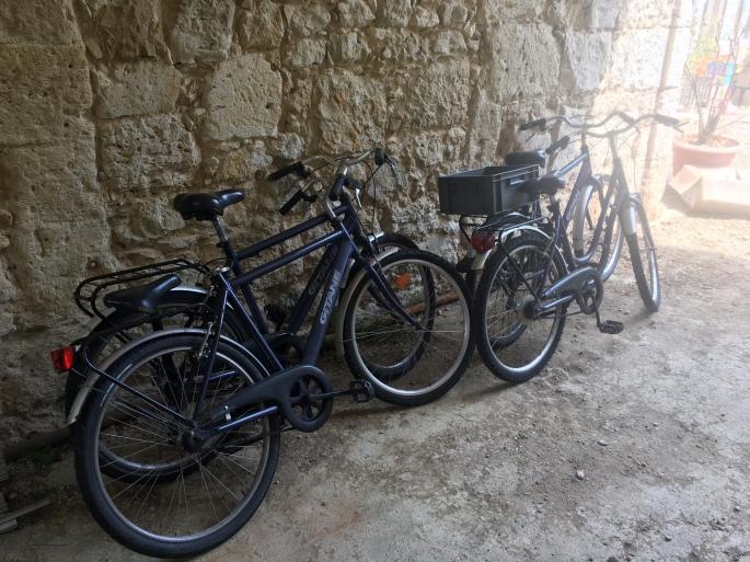 fr_bicycles.jpg