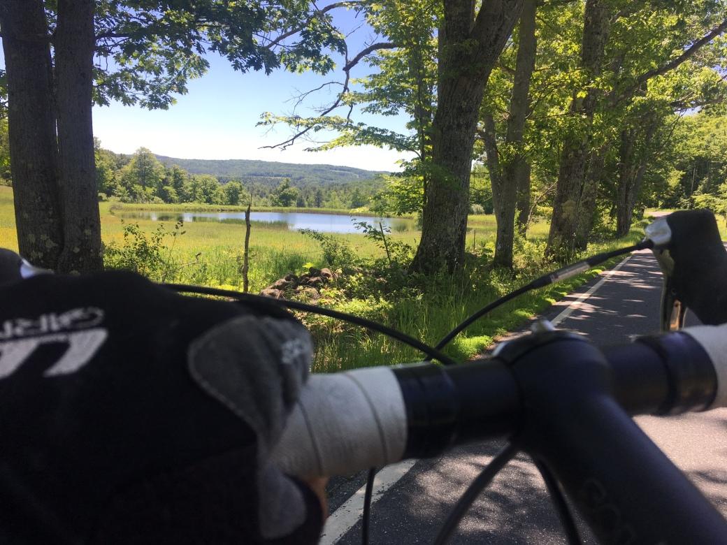 june_bikeDogford
