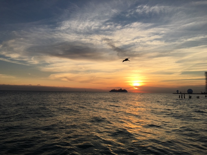 kw_sunset_ship_bird