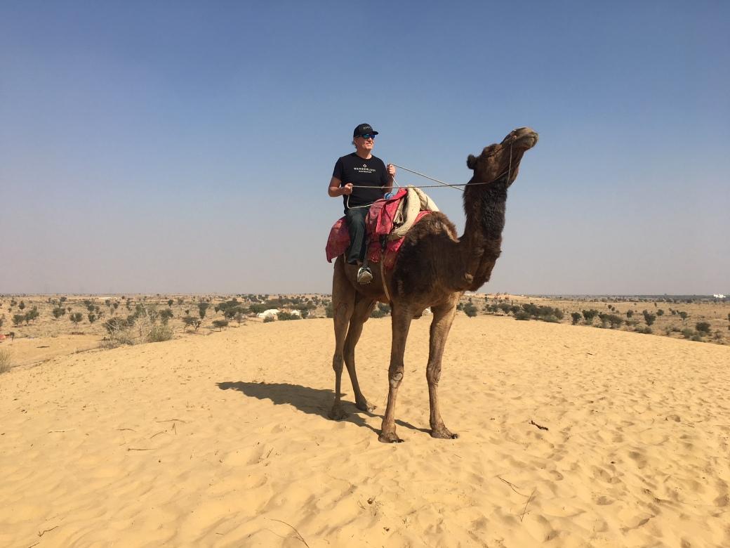 I_Camel_Me