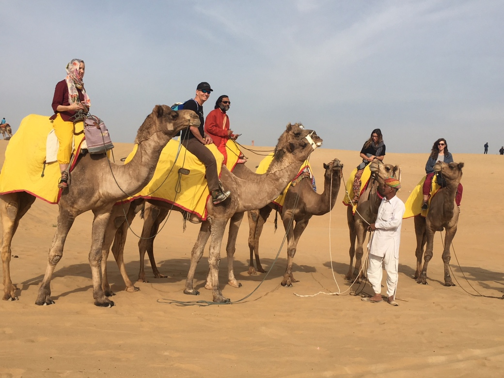 I_CamelGroup2.jpg